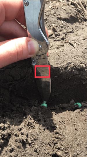 Checking seed depth