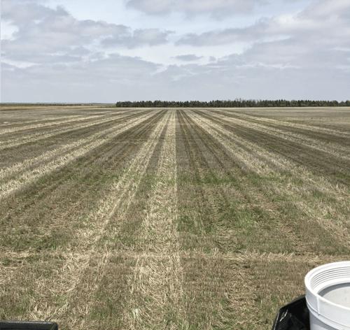 Blunt, South Dakota LEAP plot